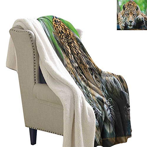 sunsunshine Jungle snuggies for Adults South American Jaguar Wild Animal Carnivore Endangered Feline Safari Image Blanket Small Quilt 60x78 Inch Orange Black Green (Jaguars Snuggie)