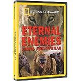 Eternal Enemies:Lions & Hy
