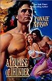 A Promise of Thunder, Connie Mason, 0843948604