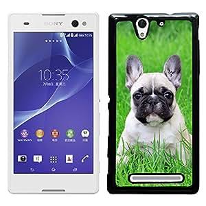 Print Motif Coque de protection Case Cover // V00000854 Patrón del perro de perrito // Sony Xperia C3 D2533/ C3 Dual D2502