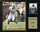 NFL Miami Dolphins Cameron Wake Player Plaque, 12 x 15-Inch