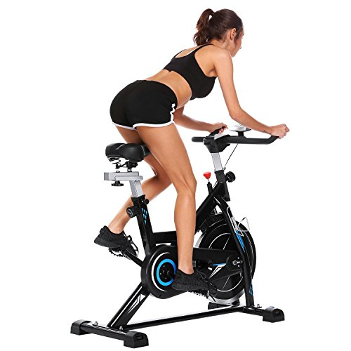 Oguine Indoor Fitness Cycling Bike Cycle Trainer Exercise Bike, Spin Bike Belt Resistance with 49Ibs Flywheel &LCD Screen (US Stock)