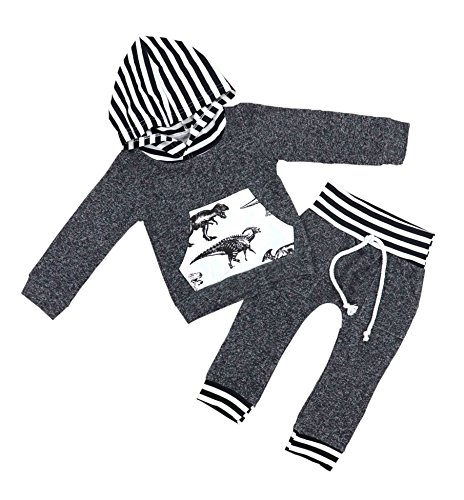 Dinosaur Outfits For Toddlers (2Pcs Toddler Infant Baby Boys Dinosaur Long Sleeve Hoodie Tops Sweatsuit Pants Outfit Set 12-24 Months)