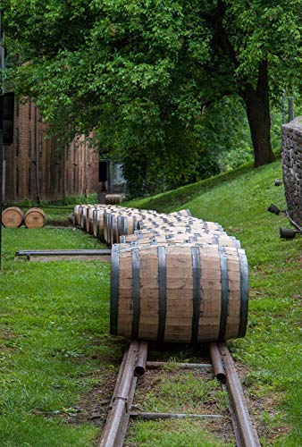 Fine Art Print of Woodford Reserve Bourbon Barrels - Unframed and Canvas Wall Art for Home, Bar or Pub - Various Sizes - Bourbon and Whiskey Gifts