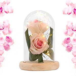 Beauty and The Beast Rose,2 pcs Enchanted Red Rose in Glass Dome with LED Light,Best Present for Her/Mom Holiday Birthday Party Wedding Anniversary Valentine Home Decor 84