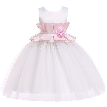 Amazon.com: QZ Vestido de flor para niña de verano, color ...
