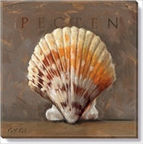 Darren Gygi Pecten Shell Painting 9