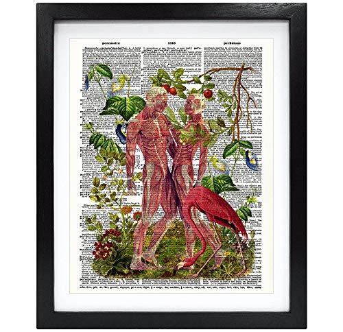 Susie Arts 8X10 Unframed Skeleton Muscle Couple Love Human Anatomy with Flamingo Bird Print Aniversary Upcycled Vintage Dictionary Art Print Book Art Print Home Decor Wall Art V180