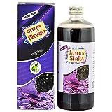 jamun Vinegar Organic Vinegar|Jamun Sirka (Pack of 2)|Best Quality