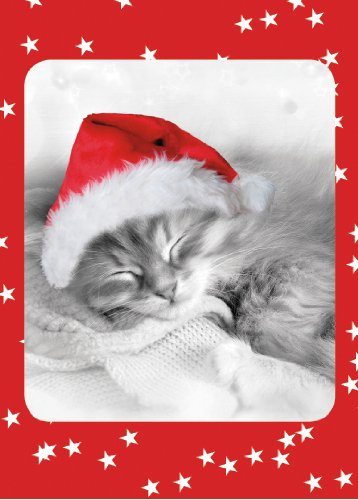 Fuzzy Christmas Kitten Boxed Holiday (Fuzzy Kitten)
