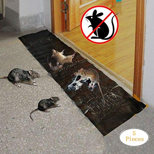 Transer Jumbo Mouse Glue Traps, Rat Glue Trap Sticky Boards Catcher Professional Strength Glue for Mice/Insect / Lizard/Spider / Snake/Cockroach / Rodent, 11