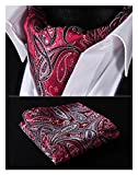 HISDERN Mens Paisley Jacquard Woven Self Cravat Tie Ascot Set One Size Red / Gray / Black