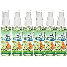 Scentique 02260-6 Fresh Breeze Cucumber Melon Air Freshener, 6 Pack (2 oz)