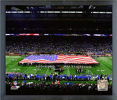 Detroit Lions Ford Field Photo (Size: 12