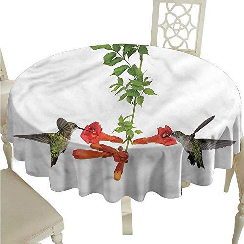 Vineyards Nectar - crabee Table Cloth Printed Hummingbirds,Hummingbird Nectar Sip,Round Tablecloth
