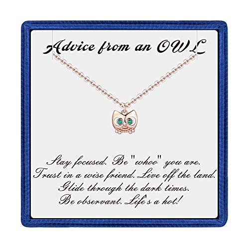 (PAERAPAK Graduation Gifts for Her - Rose Gold Cubic Zirconia Owl Charm Necklace Inspirational Necklace with Message Card Best College Graduation Gifts for)