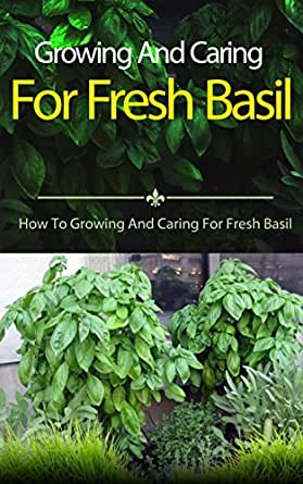 growing and caring for fresh basil how to growing and caring for fresh basil kindle edition. Black Bedroom Furniture Sets. Home Design Ideas