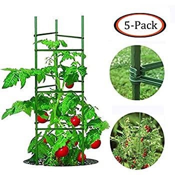Amazon.com : Gardener's Supply Company Lifetime Tomato Cages, Heavy on