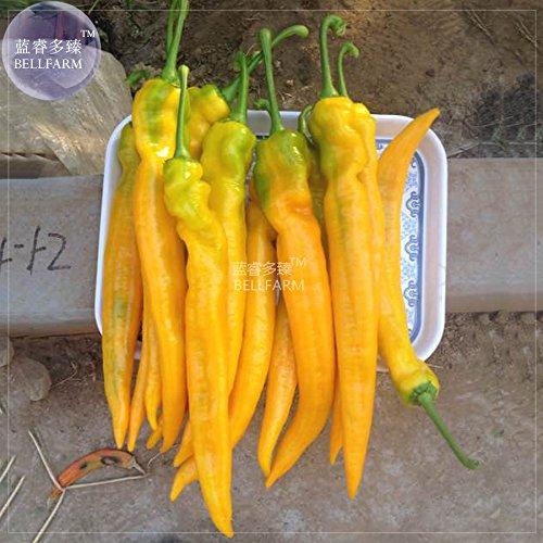 Poppy Flower Organic Horn - 2018 Hot Sale!! Maslin Yellow Pepper Hot Chili Horn Pepper Vegetable Seeds, 50 Seeds, Very hot Capsicum Organic Long Pepper BD148H