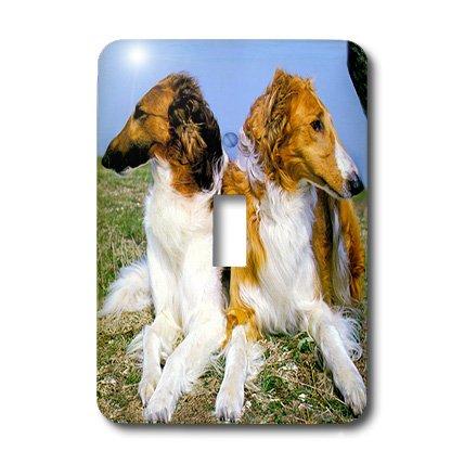 Borzoi Clock - lsp_403_1 Dogs Borzoi - Borzoi - Light Switch Covers - single toggle switch