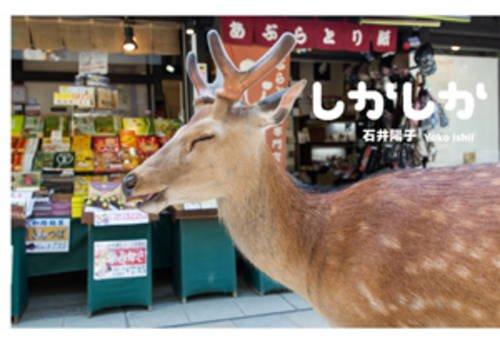 Download Yoko Ishii - Dear Deer (Japanese Edition) ebook