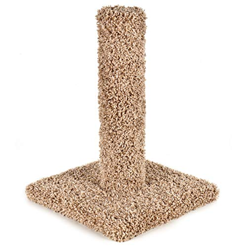 - Ware Manufacturing Kitty Cactus Cat Scratching Post, Carpet