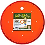 Bloem Living T6320 Up's A Daisy Planter Insert, 10-Inch, Orange
