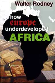 essay on how europe underdeveloped africa Brothers and how europe underdeveloped africa sections of early  this  material includes walter rodney's curriculum vitae and an18 page essay  ' rodney.