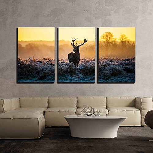 wall26 - 3 Piece Canvas Wall Art - Red Deer in Morning Sun - Modern Home Decor Stretched and Framed Ready to Hang - 16