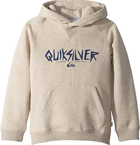 (Quiksilver Boys' Big Rough Type Hoodie Zip Youth Fleece, Birch Heather, L/14)