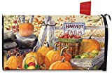 Briarwood Lane Harvest Farm Fall Magnetic Mailbox Cover Pumpkins Apples Standard