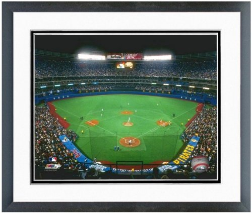 Pittsburgh Pirates Three Rivers Stadium (Pittsburgh Pirates Three Rivers Stadium MLB Photo (Size: 22.5
