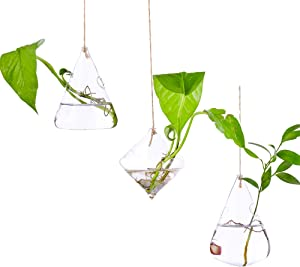Hanging Glass Hydroponic Planter Set, Small Household Plant Pots, Glass Containers, Green Sucullent Plant Terrariums for Bar Home Garden Hotel Decoration (3 Geometries)