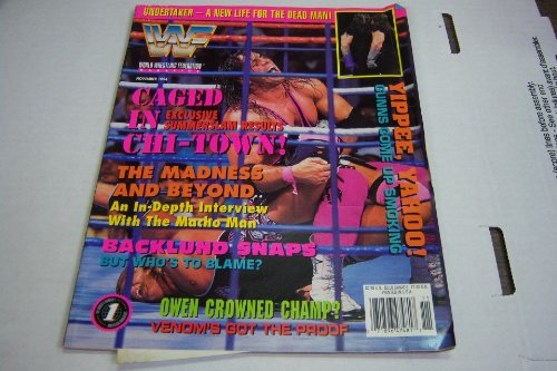 Undertaker Life - WWF WWE Magazine November 1994