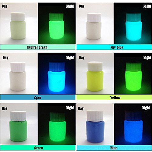 6 Color Pack Glow in The Dark Pigment Powder - 25g Each,150g Total by KINGFINGER
