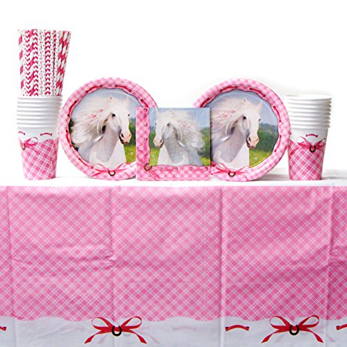 Heart My Horse Tableware Party Pack for 16 Guests: Straws, Dessert Plates, Beverage Napkins, Cups, and Table Cover ()