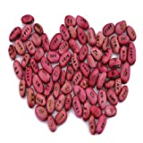 TraveT Original DIY Magic Bean Seed Plant Growing Message Word
