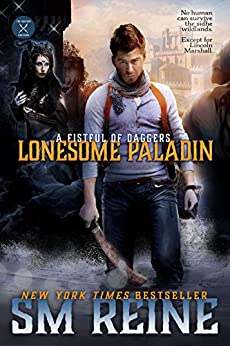 Lonesome Paladin by SM Reine ebook deal
