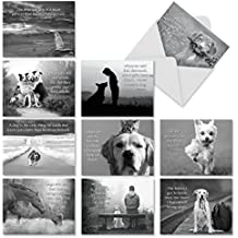 Canine Comments: 10 Assorted Blank All-Occasion Note Cards   Dogs Related Quotes Paired With Pictures In Black And White, 4x5 Notes w/White Envelopes - M1623BN