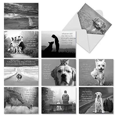 Canine Comments: 10 Assorted Blank All-Occasion Note Cards | Dogs Related Quotes Paired With Pictures In Black And White, 4x5 Notes w/White Envelopes - M1623BN (White Sympathy Note)