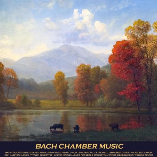 Adagio for Strings and Organ in G Minor Bach Chamber Music