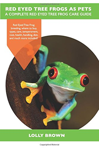 Red Eyed Tree Frog Care - 2