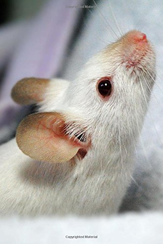 Read Online Little White Mouse with a Pink Nose Pet Journal: 150 Page Lined Notebook/Diary ebook