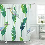 Emvency Shower Curtain Waterproof Adjustable Polyester Fabric Blue Trendy Composition of Tropical Birds and Palm Leaves Summer on Light Beach 72 x 72 Inches Set With Hooks For Bathroom