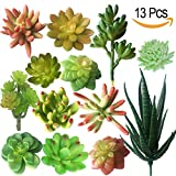 MOORAY Faux Succulents-Assorted Artificial Succulents for Home Decor, Indoor, Wall, Garden DIY Decorations-Pack of 13 Artificial Succulent Plants