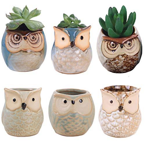 LANKER 6 Pack 2.5 Inch Mini Owl Pots Flowing Glaze Ceramic Succulent Planter Plant Container(2.5 inch 6pcs)
