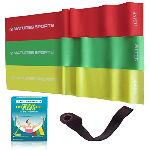 Flat Exercise Stretch Bands 3 x Resistance Bands Set (Light Medium Heavy) Latex Free - Physical Therapy Bands for Yoga Ballet Pilates - Free Bonus Door (Latex Free Flat Band)