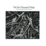 Download The Ten Thousand Things in PDF ePUB Free Online