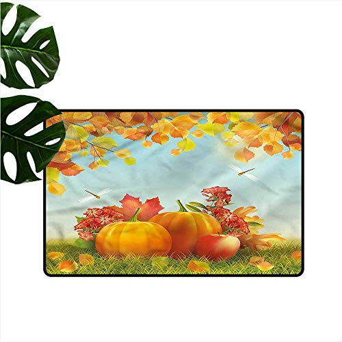 - Waterproof Door mat Pumpkin Nature Harmony Dragonflies Easy to Clean W31 xL47