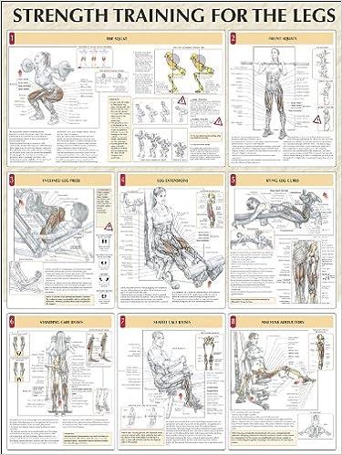 Strength Training for the Legs Poster (Strength Training Anatomy ...